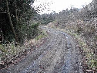 横尾林道2
